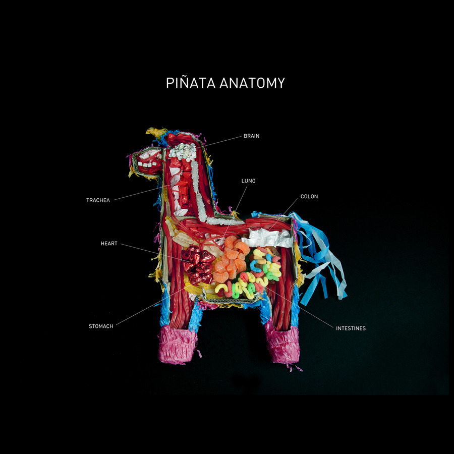 Easily Entertained - Pinata anatomy