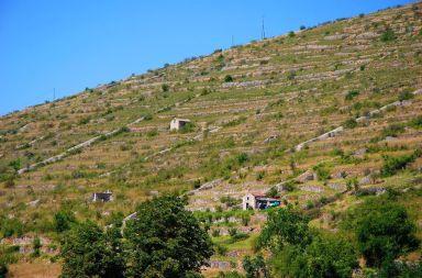 paysage-terrasse-st-rome-de-tarn