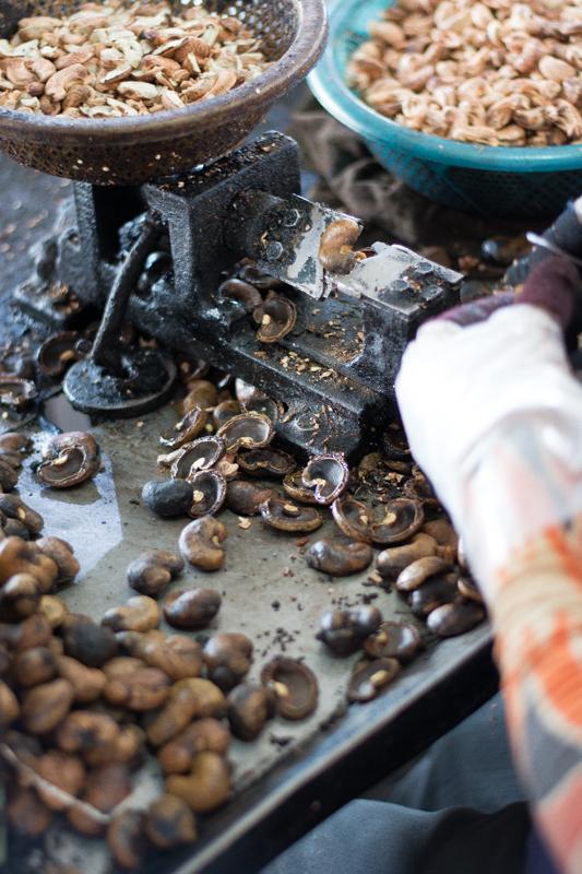Découpe des noix de cajou à la main