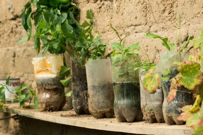Agriculture urbaine à Sucre - Un exemple de jardinière - http://paysansdavenir.com/agriculture-urbaine-pourquoi-comment-lexemple-de-la-bolivie/