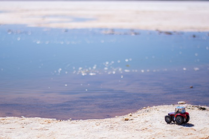 Uyuni - bébé tracteur découvre le salar