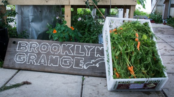 Brooklyn Grange Farm : Agriculture urbaine à New-York !