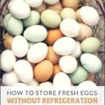 How Fast Do Fresh Eggs Need To Be Refrigerated