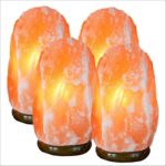 Salt Lamps Sold Near Me