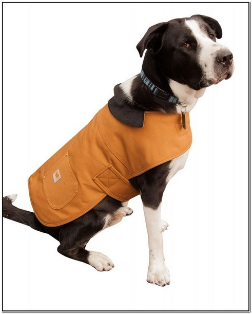 Carhartt Dog Chore Jacket