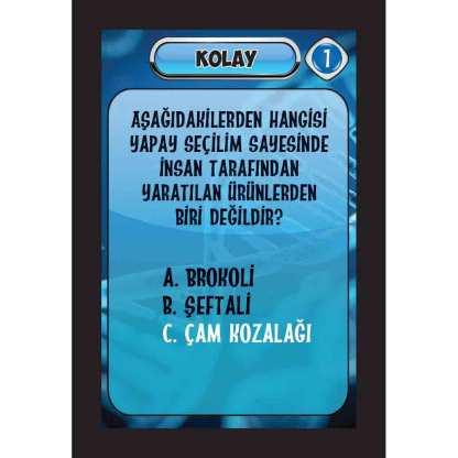 KOLAY-38