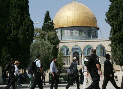 56 مستوطنا يقتحمون باحات المسجد الأقصى