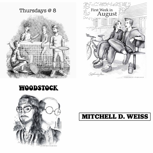 The 3-Play Project by Mitchell D. Wess