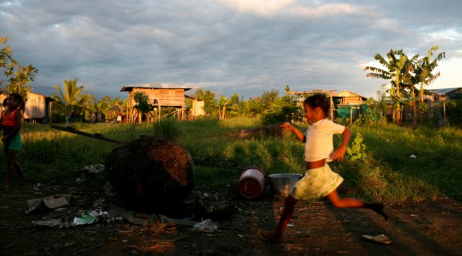 Protecting their mother: Afro-Colombians fight to reclaim their land from palm oil