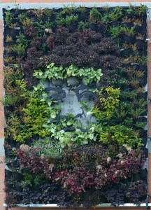 """The """"Chilito"""" vertical garden: a """"garden turned memory"""" was installed last year by the artistic duo """"Magdalenas por el Cauca"""" (Gabriel Posada and Yorlady Ruiz López) along with the forestry engineer Martín Camilo Pérez and the families of the victims of the massacre."""