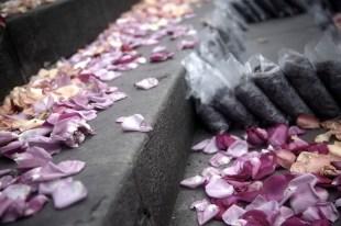 flores plaza bolivar 2016
