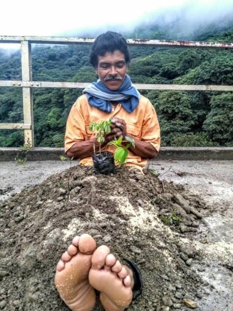 Cuerpos Rio Cauca 9