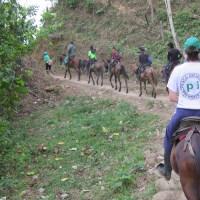 Convocatoria/Llamamiento a ExVoluntarios/as del COP, para apoyo temporal al Proyecto en 2019