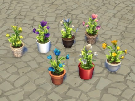 pbox_plants-modular-VI_flowers_all