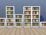 bookcase_intellect_all