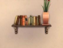bookshelf-wall_rustic_04
