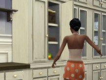countrykitchen_cupboard-fitted_in-game-01