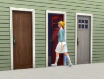 doors-mega-rc_in-game