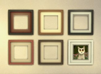 frames_colours-2