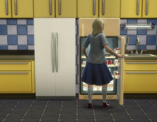 fridge-resize_in-game