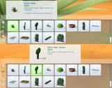 mts_plasticbox-1488955-pbox_liberated-plants-desert_cat03