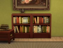 mts_plasticbox-1512071-bookcase-moderate_02