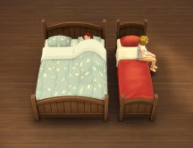 mts_plasticbox-1527649-bedframe-rustic_in-game