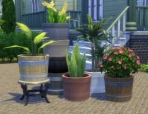 pottable-plants_03