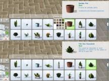 pottable-plants_cat-1
