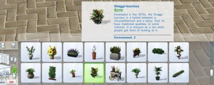 pottable-plants_cat-5