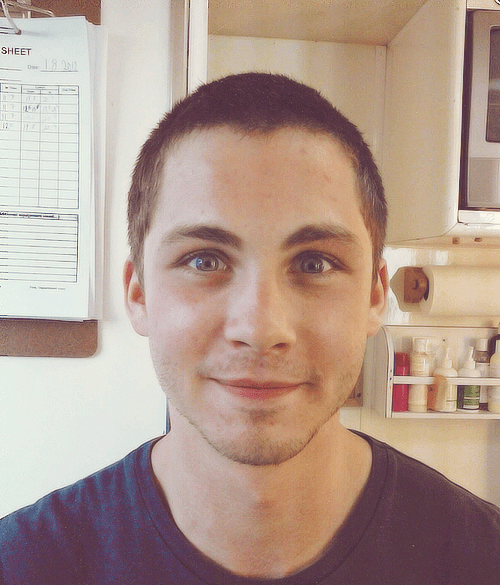 Logan Lerman Haircut The Best Haircut Of 2018