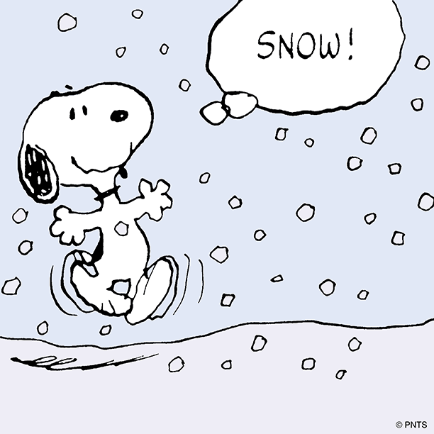 RT @Snoopy: Snow season. http://t.co/TaCORjQCdi