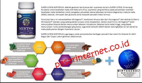Mirtoplus penggabungan dari Lutein dan Mirtogenol ®