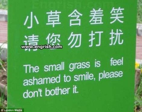 Image result for bad translations