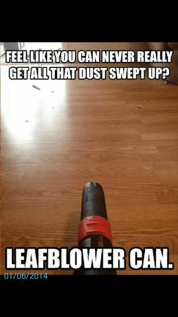 leaf blower can real