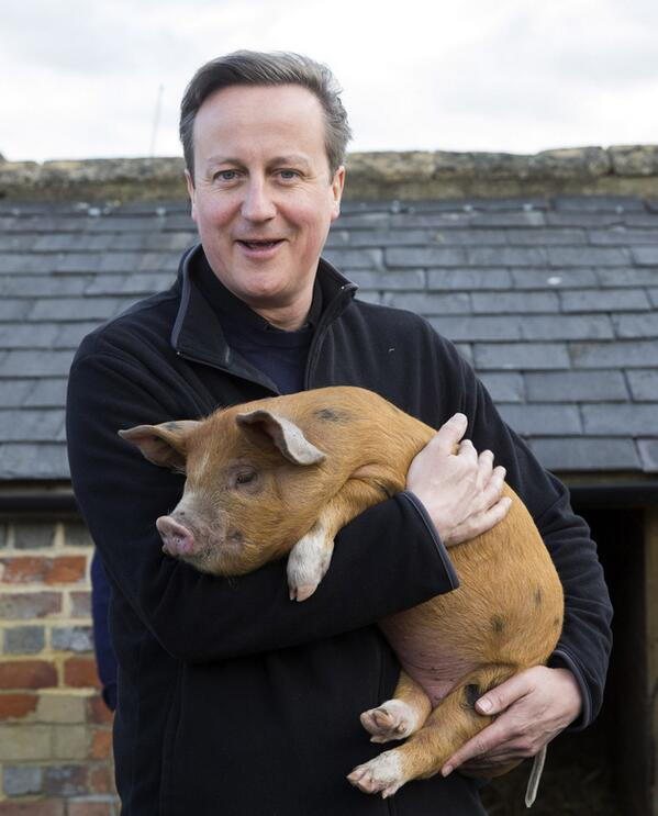 Watch where Cameron puts his hands...