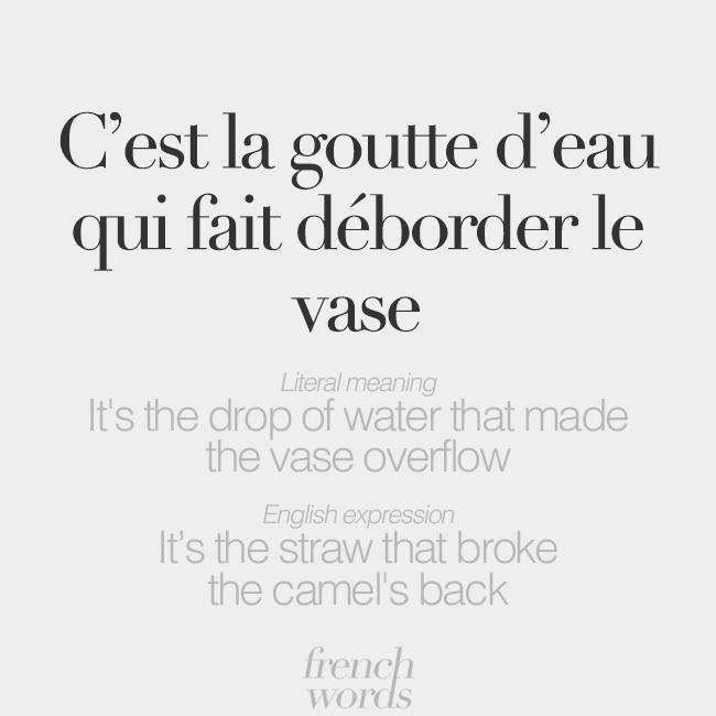 French Words on Twitter: