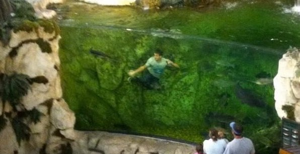 """Maxim on Twitter: """"A kid jumped into a bass pro shops fish tank, and it definitely  wasn't a good idea. https://t.co/Yt5g7Wg6up… """""""
