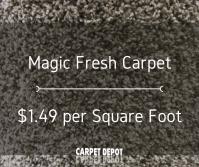 Carpet Depot Okc | Two Birds Home