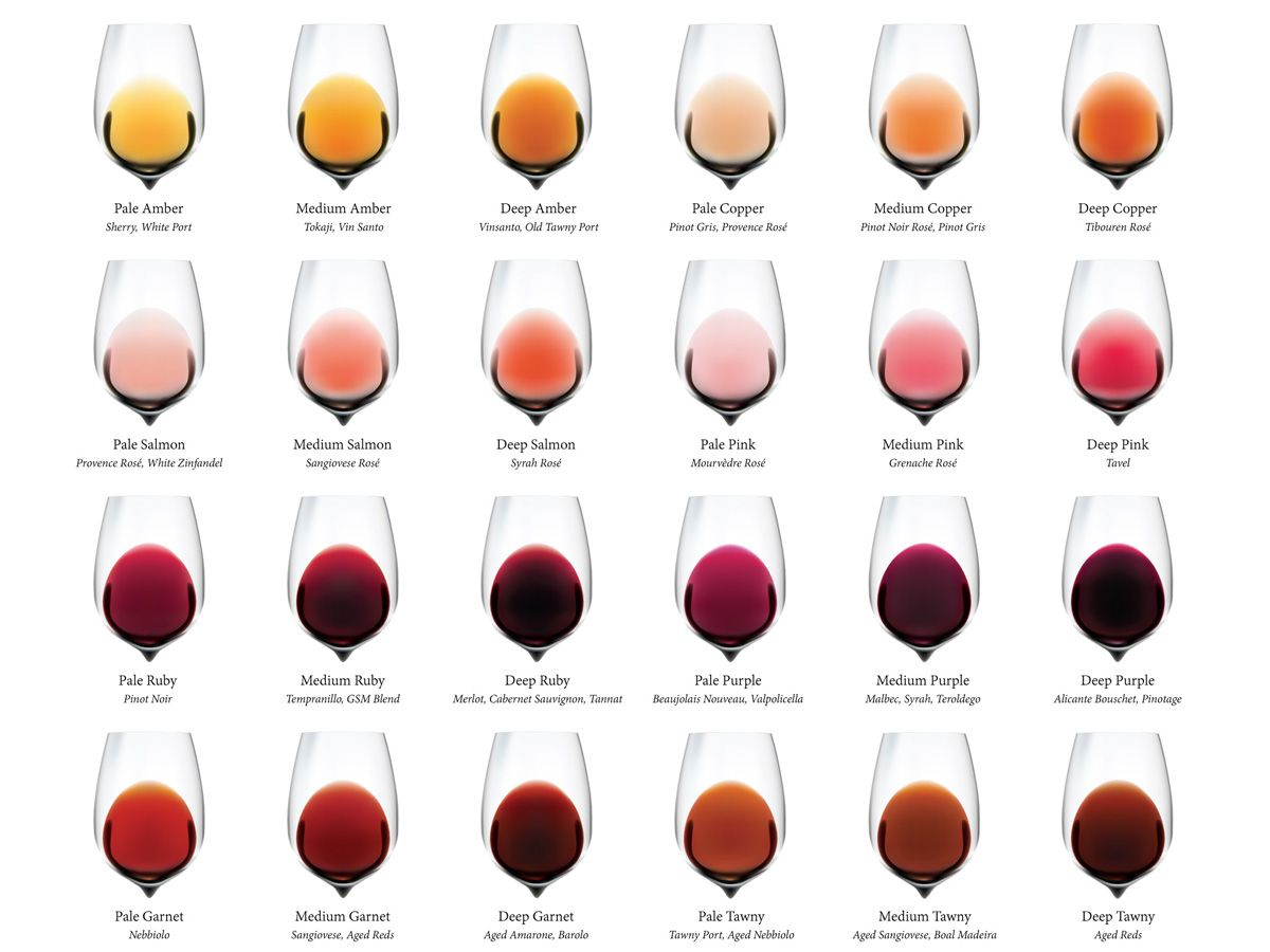 Wine Folly On Twitter Complete Wine Color Chart