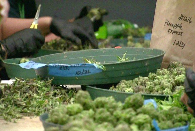 Lakeland discussing a moratorium on medical marijuana dispensaries. Commissioners to vote.