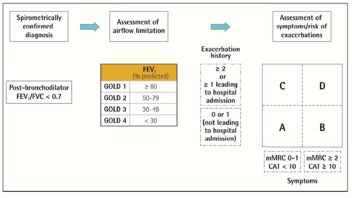 Gold Copd Guidelines Spirometry - Hirup v