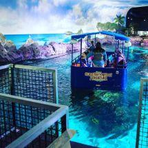 Ripley's Aquarium Gatlinburg Glass Bottom Boat