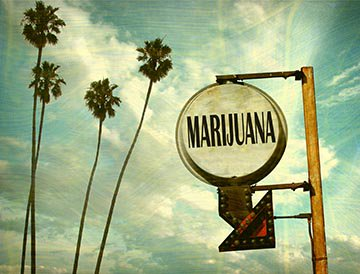 Cal NORML has updated its page on California #Marijuana Laws