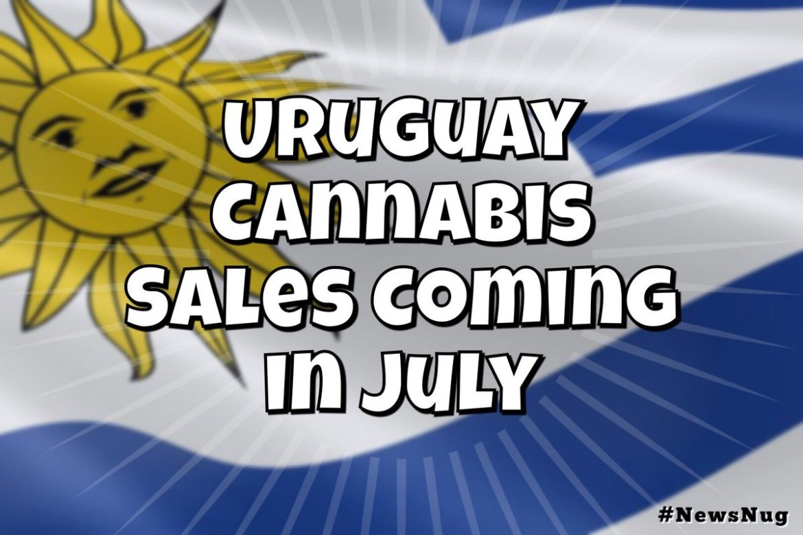 Uruguay Cannabis Sales Coming in July   #newsnug #worldreefers