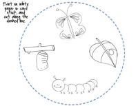 All Worksheets  Life Cycle Of A Butterfly Printable ...
