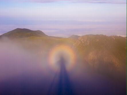 test ツイッターメディア - 何びびってんのよ?【ブロッケン現象】よ。太陽の光が差し込んで霧や雲に影が映る現象ね。影の周りには霧や雲の粒子がプリズムのような役割を果たすから虹ができるのよ。高山でも見られるけど飛行機からでも見られるわ。微妙に右と似てるわね https://t.co/KO9n8keX6I