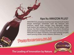 apa itu amazon plus