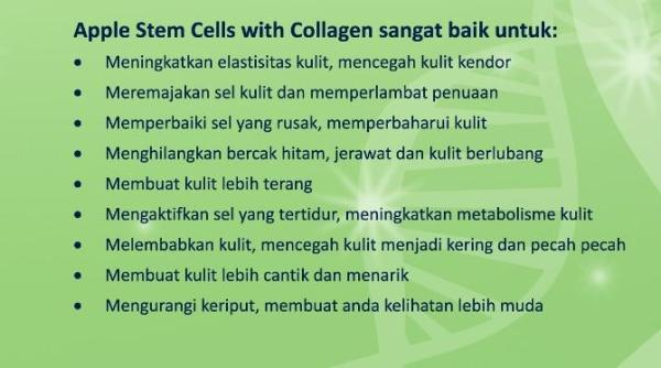 khasiat apple stem cell