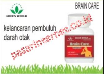 khasiat brain care capsule green world